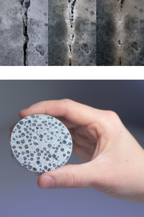 Delft University. Self-healing bioconcrete