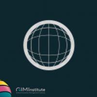 Globally recognized GIM Institute Innovation Certification