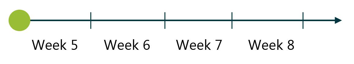 Level 2 dates